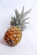 Bio Ananas Stock Photos