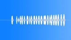Horn Horns American Car Ext Horn Honk Medium Close Up Short Incessant Honks Sound Effect