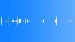 Animals Horses Horse Vocals Close Up To ECU Knickers & Love Talk Few ECU Breath Sound Effect