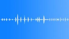 Animals Horses Horse Vocals Ext Close Up Mare Breathing Some Vocal FX Äänitehoste