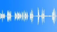 Crowds Prisons Crowds Prisons PA Announcements BG Prisoner Voices Jail Natural Sound Effect