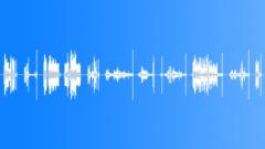 Radio Radios Los Angeles Police Radio Calls Close Up Static Different Cop Voice Sound Effect