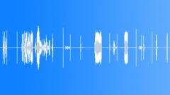 Radio Radios Mexican Police Radio Calls Close-Up Tijuana Police As Heard Throug Äänitehoste
