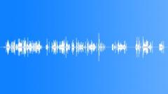 Radio Radios San Francisco Police Radio Transmissions Various Female & Male Voi Äänitehoste