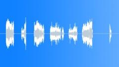 Scratch Record Records Needle Scratch ECU Short Erratic Scratches On 33 Rpm Rec Sound Effect