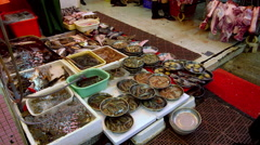 FRESH PRAWNS FISH FOR SALE NORTH POINT HONG KONG Stock Footage