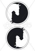 Pferd Positiv/Nagativ Yin und Yang Stock Photos