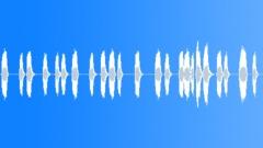 Steam Steam Reverberant Steam Blasts Interior Close Up Variety Of Reverberant M Sound Effect