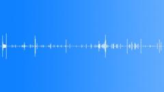 Human Vocal Vocals Kiss Kissing Close Up Varied Often Wet & Sloppy Some Subtle Äänitehoste