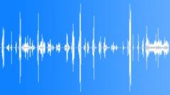 Human Vocal Vocals Native American Fighting Calls & Screams Male Individual & G Äänitehoste