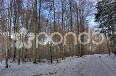 Winterlandschaft Stock Photos