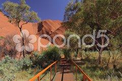 Weg zu Waterhole am Uluru Stock Photos