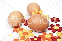 Rohe Eier und Filzblumen Stock Photos
