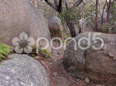 Felsen im Girraween NP Stock Photos