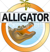 Hallo Alligator Stock Photos