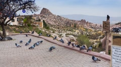 Famous pigeons valley in the Cappadocia Stock Footage