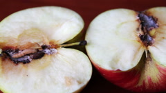 Worm Crawls out of the Tainted Apple Stock Footage