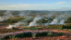 Misty morning in geothermal valley Haukadalur Stock Footage