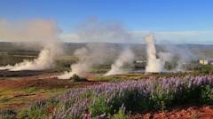 Erupting of the Great Geysir lies in Haukadalur valley Stock Footage