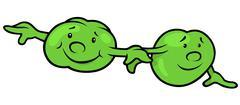 Green Pea Beans Stock Illustration