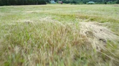 Aerial travelling shot over freshly cut farm grass in field Stock Footage