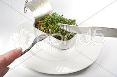 Gemüse aus der Dose Stock Photos