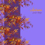 Autumn grape vine Stock Illustration