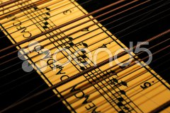 Teil einer alten Zither Stock Photos