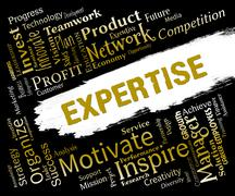 Expertise Words Indicates Proficient Skills And Experience Stock Illustration