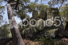 Landschaft auf Magnetic Island Stock Photos