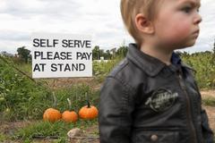 Little boy in pumpkin patch Stock Photos