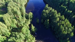 Beautiful river in the forest. Aerial view. Stock Footage
