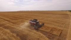 SAMARA, RUSSIA - AUG, 2016: combine ACROS 580 produced Rostselmash, harvesting Stock Footage