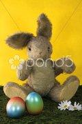 Osterhase mit Ostereiern Stock Photos