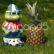 Fussball Spieler und Ananas Stock Photos