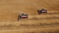Two combine are harvesting wheat, aerial shot, camera showing panorama of golden Stock Footage