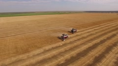 Drone flying around two smoking combine are harvesting wheat on golden field in Stock Footage