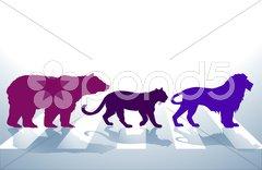Tiere auf Zebrastreifen Stock Photos