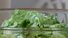 Healthy vegetable salad with olive oil dressing. Pouring olive oil. Lettuce Stock Footage