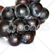 Weintrauben dunkel - Bio Stock Photos