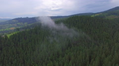 Beautiful forest in the Ukrainian Carpathians. Aerial view Stock Footage