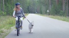Happy attractive girl cycling with her lovely dog during a free time Stock Footage