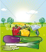 Gemüse-Garten Stock Photos