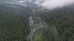 Quadrocopters flying over the road and the river in the misty forest Stock Footage