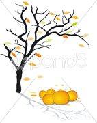 Herbst, halloween Stock Photos