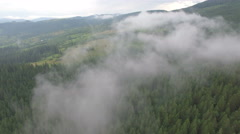 Flight over the misty forest Stock Footage