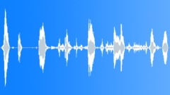 Humans Baby Vocalizations Playing Rattle Shake Happy Vocals Male Bentl Sound Effect