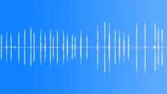 Dogs Beagle Bark Series x 30 Single Barks Panting Light Alert Calls Sound Effect