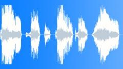 Animals Buffalo Bison Vocals Steady Growls Moans Exterior A12 MS Clos Sound Effect