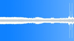 Construction Bobcat S150 Skid Steer Loader Onboard Idle Engine Whines Sound Effect